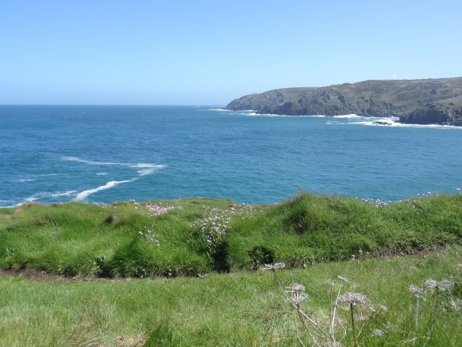 Zennor Head, a high and rugged bulwark of ancient sedimentary rock. 300 foot  cliffs drop into the sea on the western side where a cavernous inlet, the horseback zawn, is bounded by a grassy, undulating ridge called the Horse's Back.
